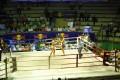 thai boxing!