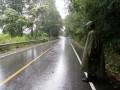 carless roads in the rain!