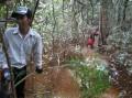 jungle trek, leeches free