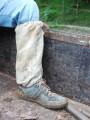 local, authentic leech sock