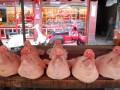 piggy heads in the market