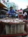friendly fish vendor of pak chong