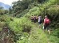 taroko gorge greeneries