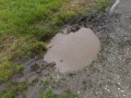 the mini ditch i drove the car into in the rain. got stuck bigtime.